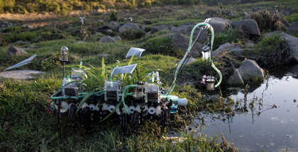 Image showing The Nomadic Plant in action